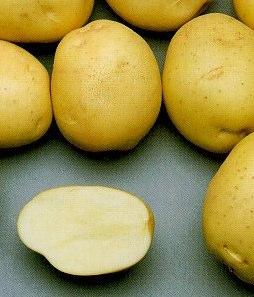 Como cozinhar batata no microondas