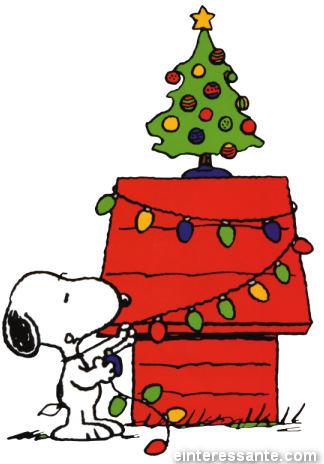 Feliz Natal para Todos