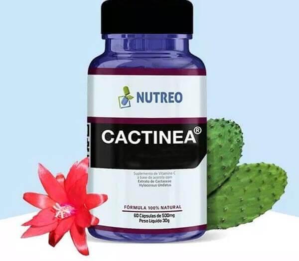 Benefícios da Cactinea
